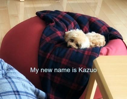 kazuo1.jpg